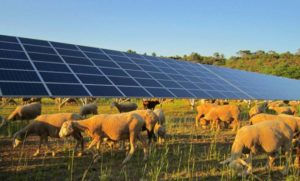 agriculteur énergies renouvelables