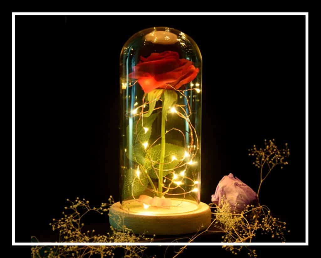 Idée cadeau : la rose éternelle sous cloche