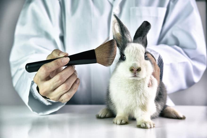Maquillage vegan : le développement des produits respectueux des animaux